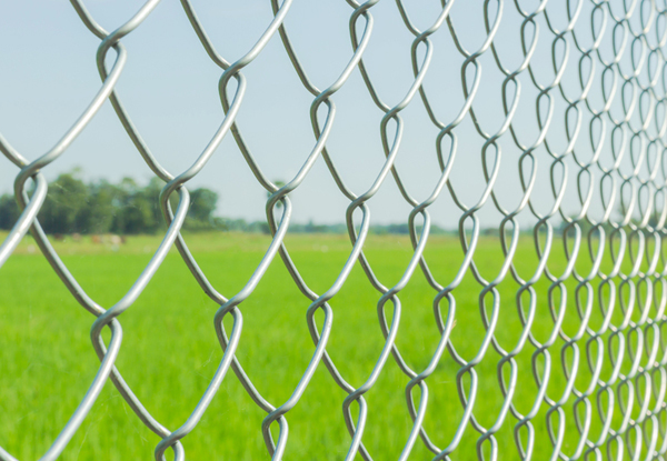 Chain Link Fence - United General Service (UGS) 1