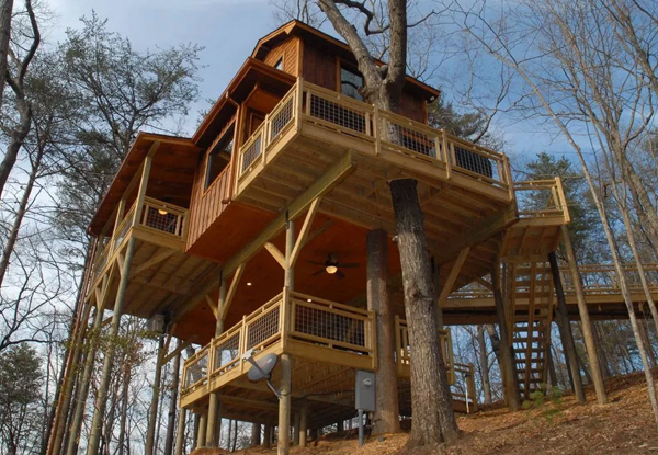 Custom Treehouses - United General Service (UGS) 2